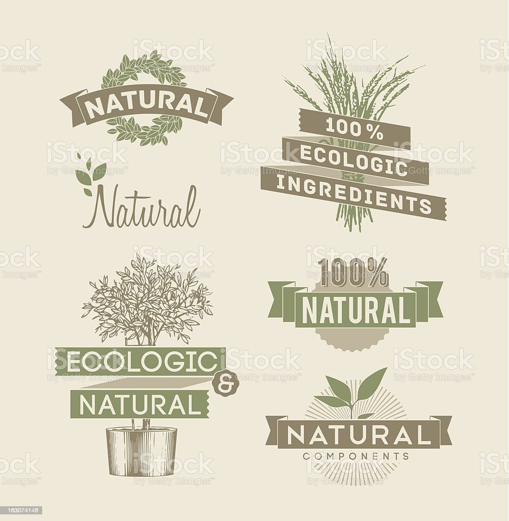 Ecologic and natural emblems vector art illustration