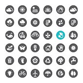 Ecosystem and Technology related icons.