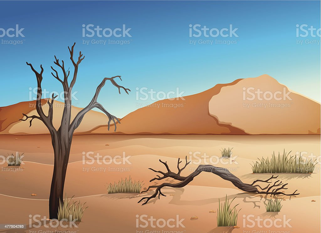 Ecosystem Desert vector art illustration
