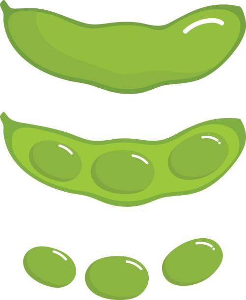 枝豆 - 枝豆点のイラスト素材/クリップアート素材/マンガ素材/アイコン素材