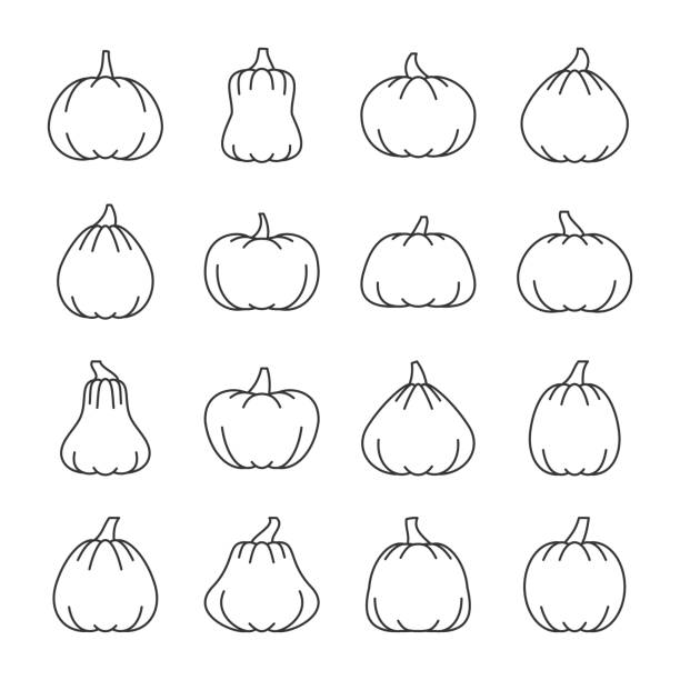 Editable stroke Halloween pumpkin line icon set Halloween pumpkin with place for face thin line icon set. Vector linear symbol pack. Outline sign without fill. Editable stroke. Color book illustration. Simple pictogram graphic collection design pumpkin stock illustrations