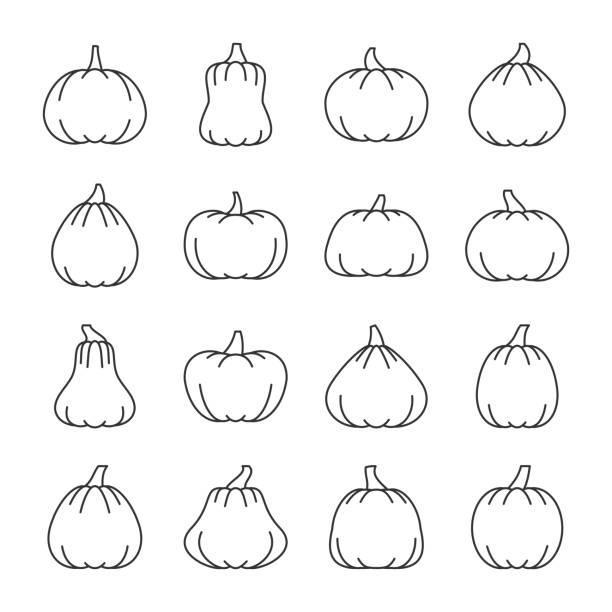 editierbare strich halloween kürbis liniensymbol festgelegt - flaschenkürbis stock-grafiken, -clipart, -cartoons und -symbole