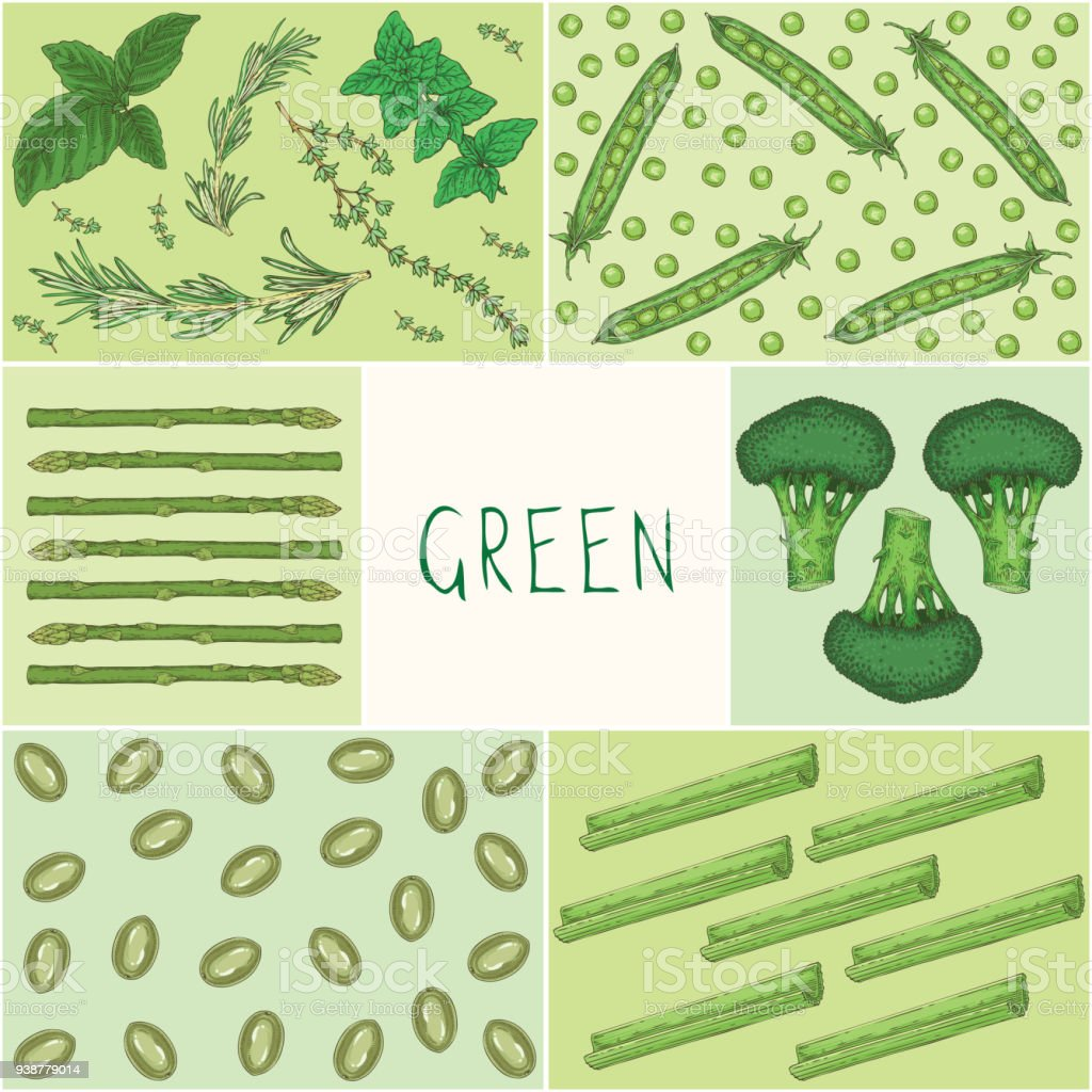 Education Game Green Color Vegetables Stock Vector Art & More Images ...