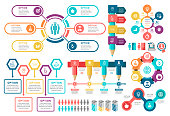 Vector illustration of the education infographic and icons