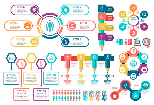 education infographic elements - demographics infographics stock illustrations, clip art, cartoons, & icons