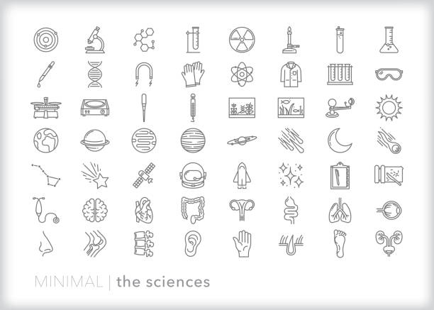 Education line icon set of the sciences Line icon set of school, laboratory and learning icons of the sciences including biology, chemistry, physics, anatomy and astronomy science icons stock illustrations