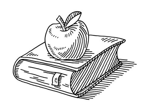 Education Symbol Apple Book Drawing