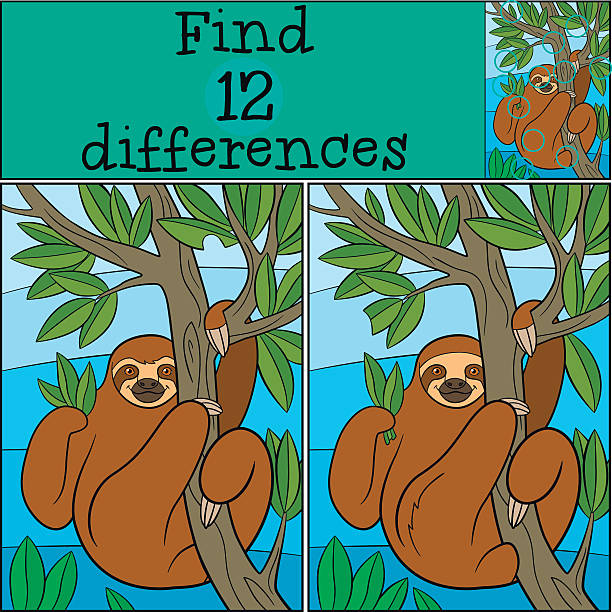 Educational game: Find differences. Cute lazy sloth. Educational game: Find differences. Cute lazy sloth hangs on the tree branch and smiles. baby sloth stock illustrations