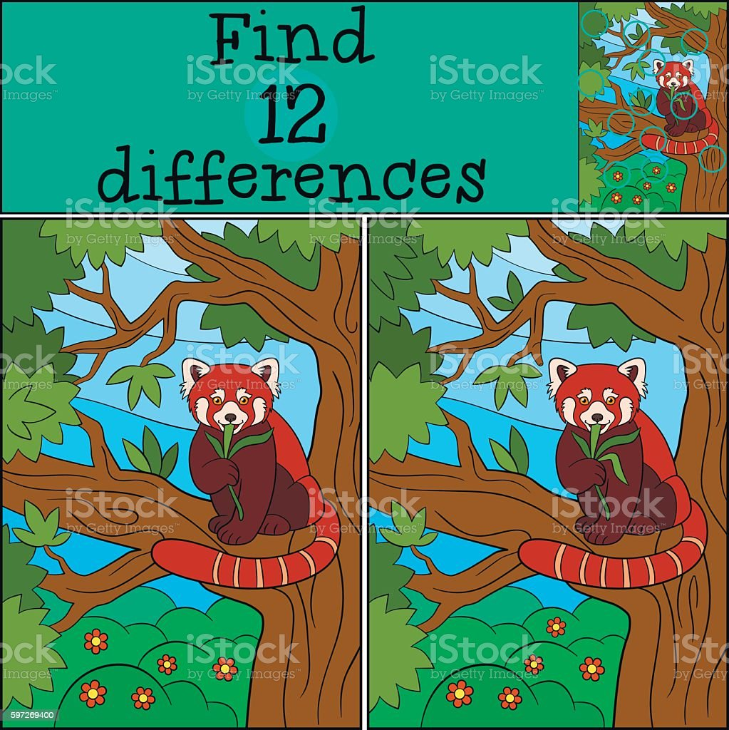 Educational game: Find differences. Little cute red panda eats. Lizenzfreies educational game find differences little cute red panda eats stock vektor art und mehr bilder von asien