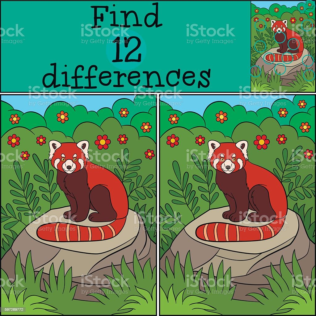 Educational game: Find differences. Little cute red panda. Lizenzfreies educational game find differences little cute red panda stock vektor art und mehr bilder von asien