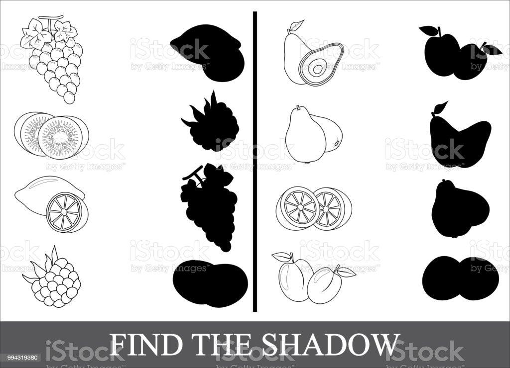 Cocuklar Icin Egitici Bir Oyun Dogru Golge Bulmak Boyama Kitabi