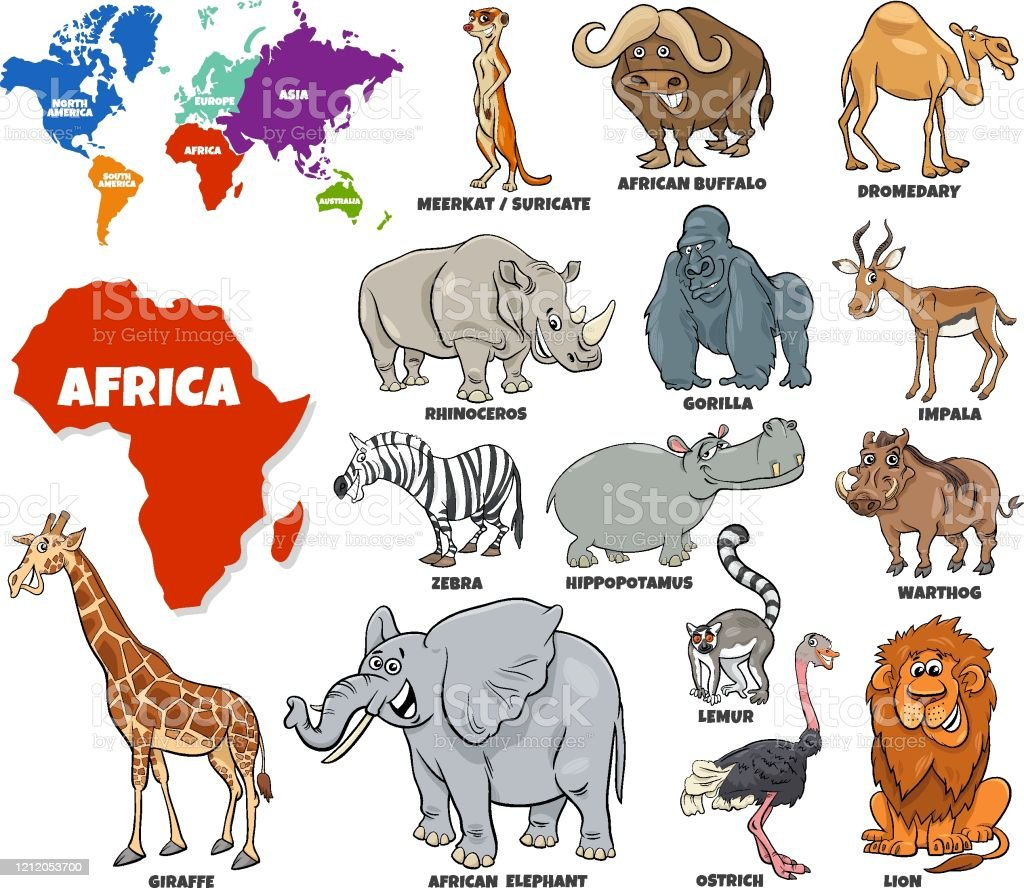 Educational Illustration Of African Animals Set Stock Illustration -  Download Image Now - iStock