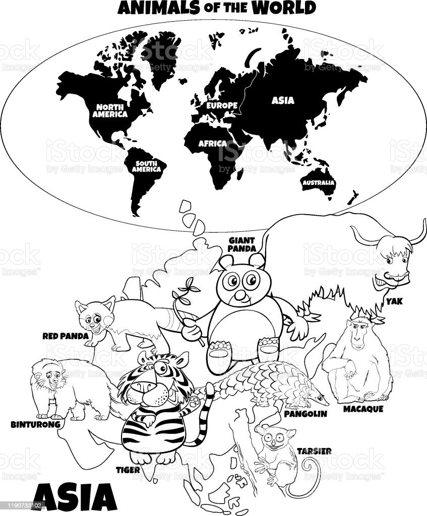 Vetores De Ilustracao Educacional Do Livro Asiatico Da Cor Dos