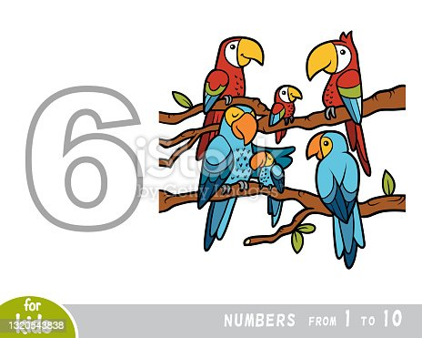 istock Educational poster for children about numbers. Digit six, six parrots. Vector cartoon illustration 1320543838