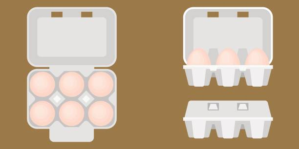 stockillustraties, clipart, cartoons en iconen met ei vak - chicken bird in box