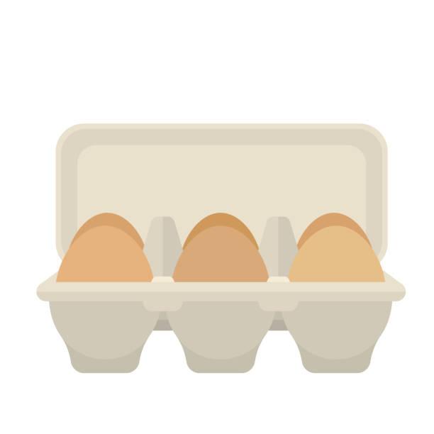 stockillustraties, clipart, cartoons en iconen met eierdoos met 6 eieren, platte vector ontwerp - chicken bird in box