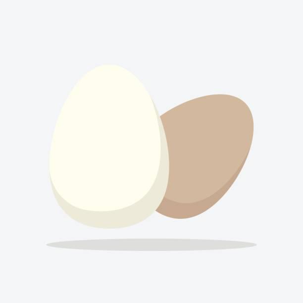 卵アイコン。白い背景の上のフラットのベクトル図 ベクターアートイラスト