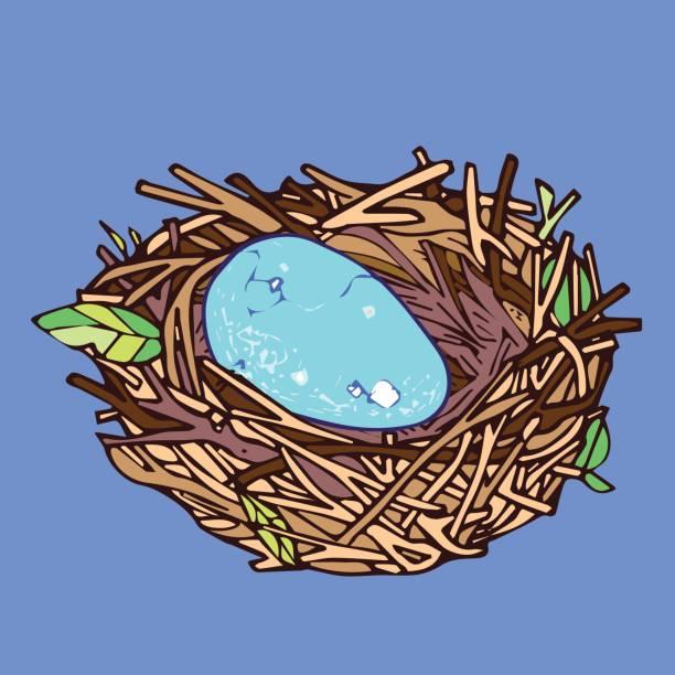 Egg in Nest vector art illustration