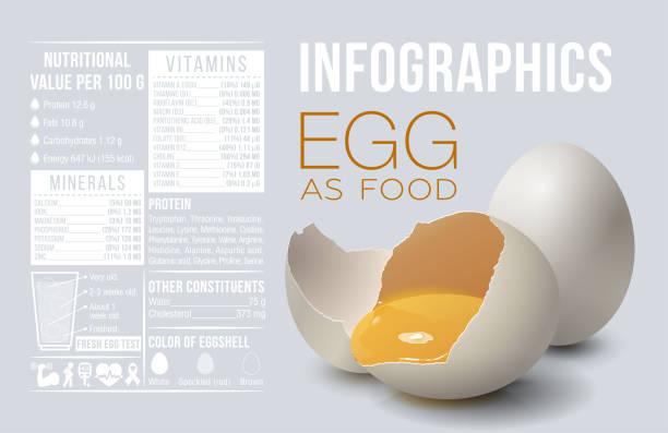 stockillustraties, clipart, cartoons en iconen met ei infographics. ei als voedsel. ontwerpsjabloon, vitaminen en mineralen. voordeel van ei. vectorillustratie - poultry farm