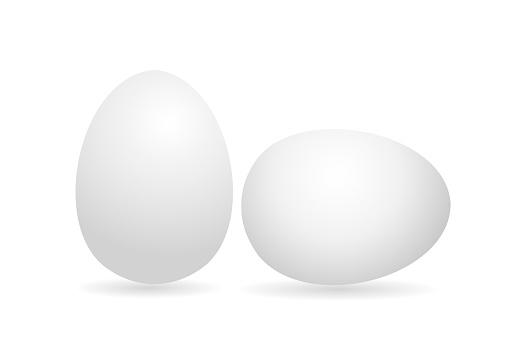 Ei Wit 3d Ei Kip Geïsoleerd Op Een Witte Achtergrond Vectorillustratie Stockvectorkunst en meer beelden van Achterover leunen