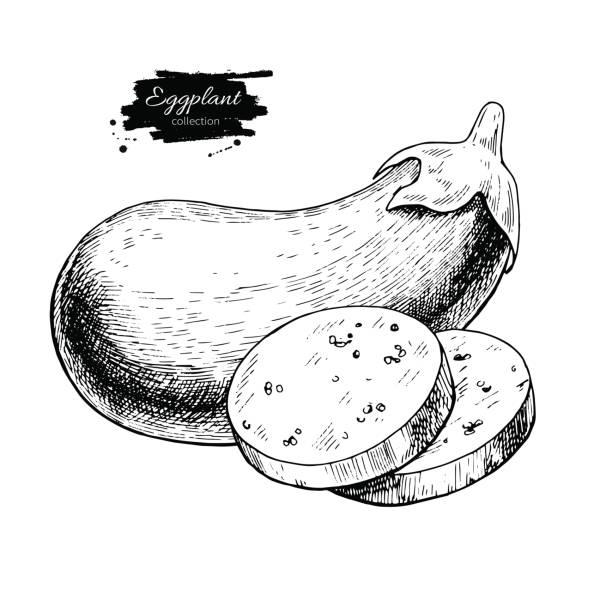 illustrazioni stock, clip art, cartoni animati e icone di tendenza di eggplant hand drawn vector illustration. isolated vegetable engraved style object with sliced pieces - melanzane
