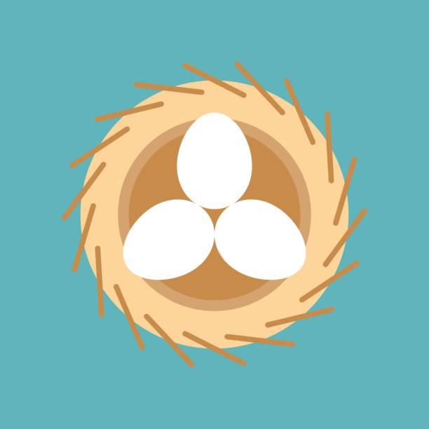 bildbanksillustrationer, clip art samt tecknat material och ikoner med ägg i bird nest, påsken och våren symbol, platt designikon - bo