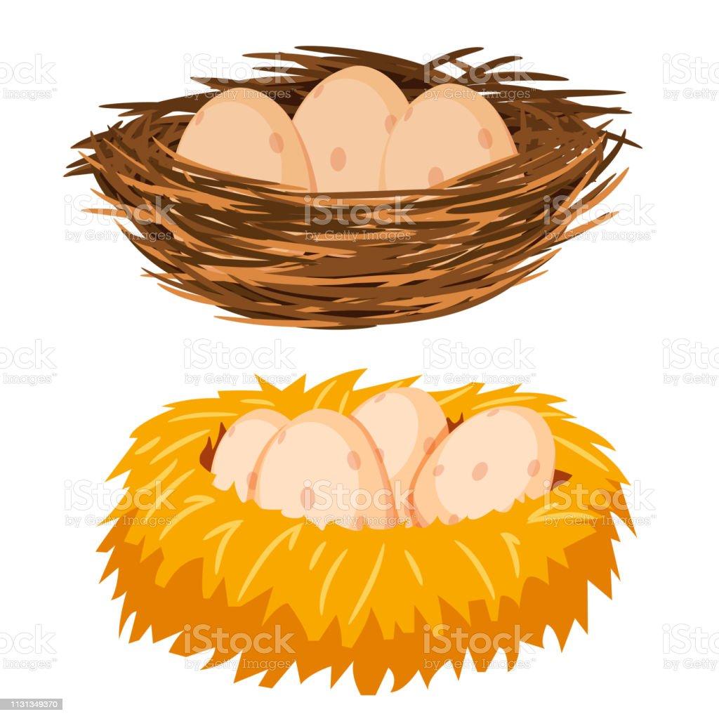 Яйца в гнезде - Векторная графика Без людей роялти-фри