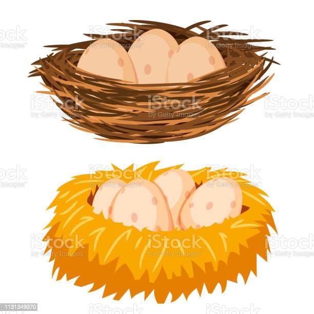 Яйца В Гнезде — стоковая векторная графика и другие изображения на тему Без людей