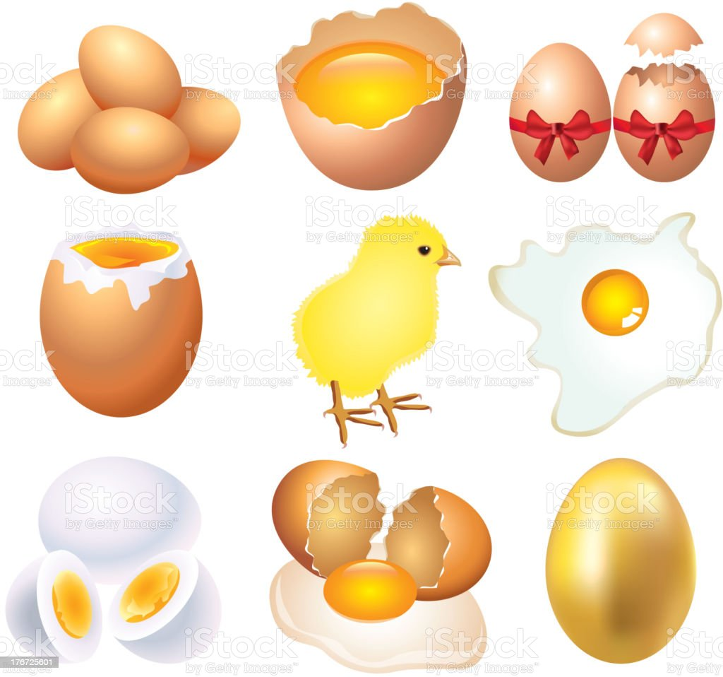 eggs photo-realistic vector set royalty-free stock vector art