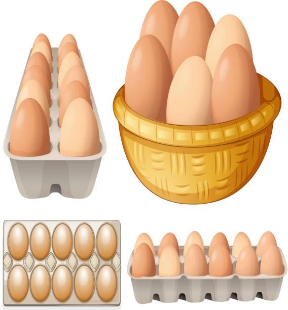 bildbanksillustrationer, clip art samt tecknat material och ikoner med eggs - ägg
