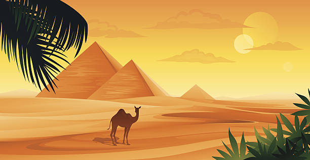 Egypt Pyramids in Egypt and camel. ancient egyptian culture stock illustrations