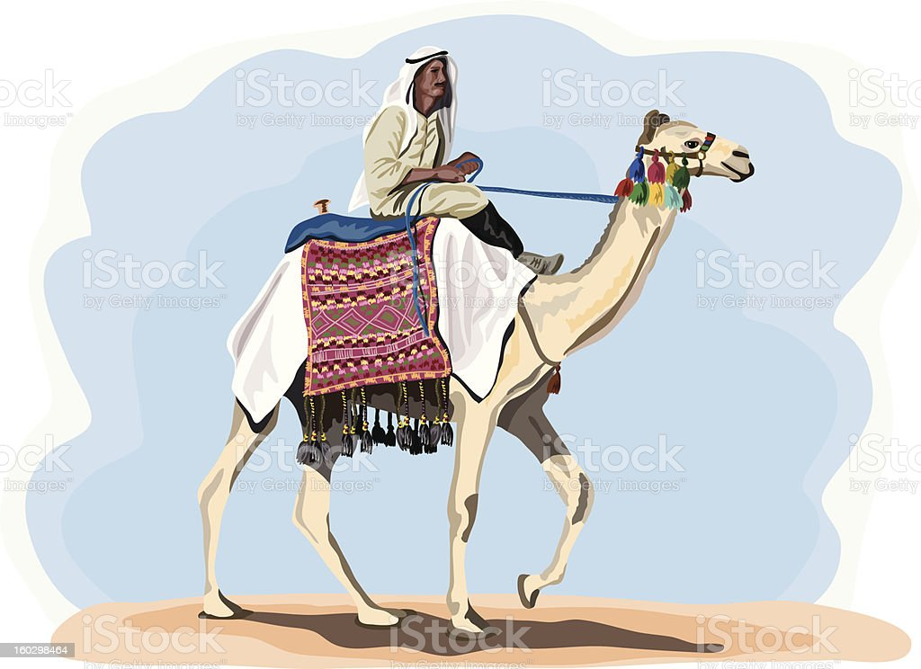 egyptian camel rider in traditional costume vector art illustration