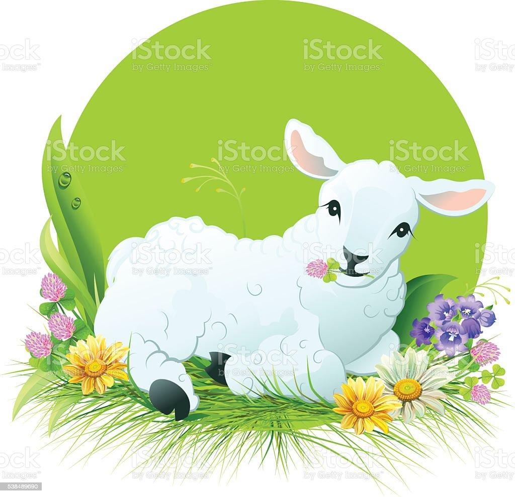 Eid al Adha. White lamb lying on grass vector art illustration