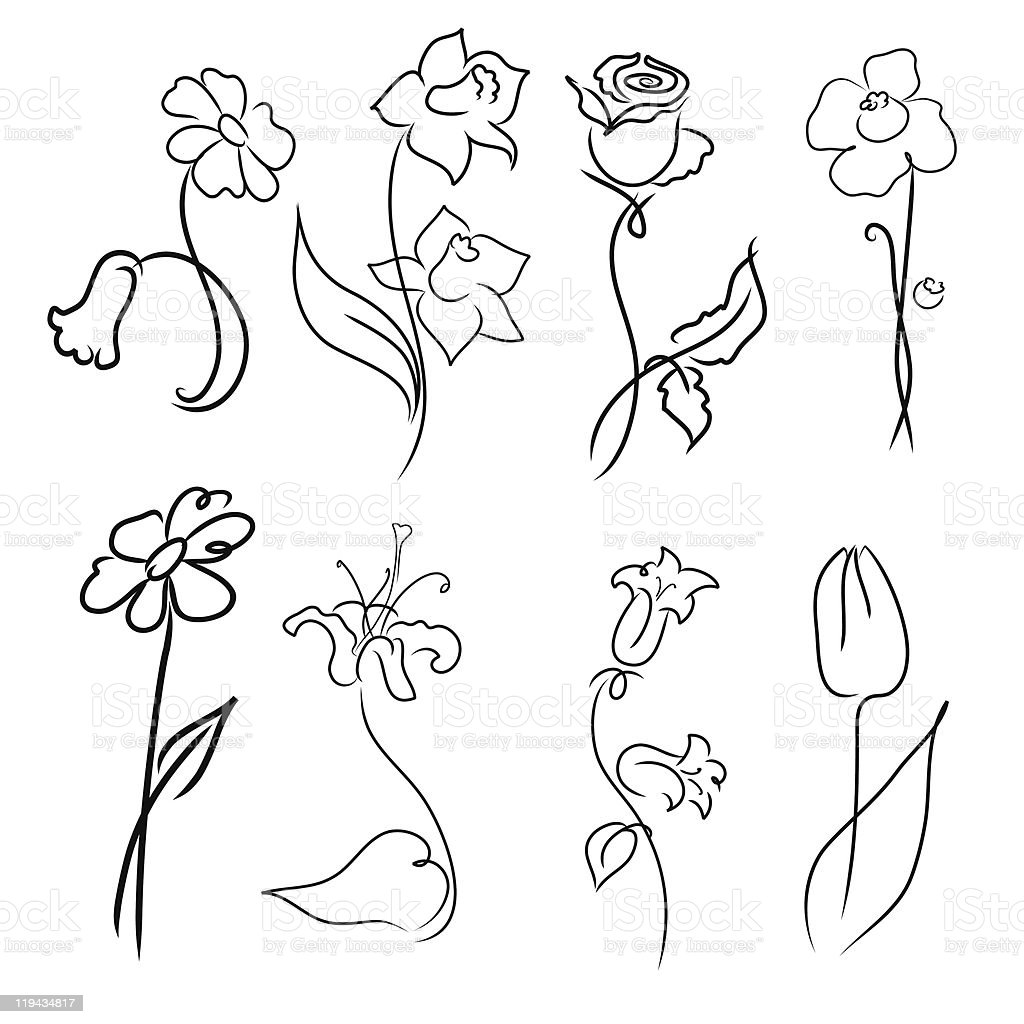 Eight beautiful flower designs in black and white vector art illustration