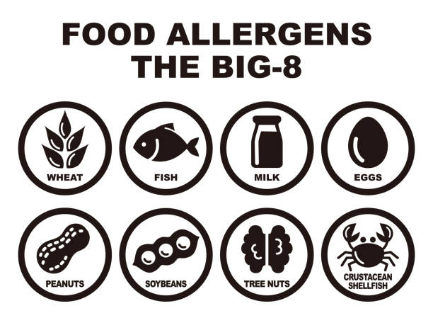 Eight major food allergens vector art illustration