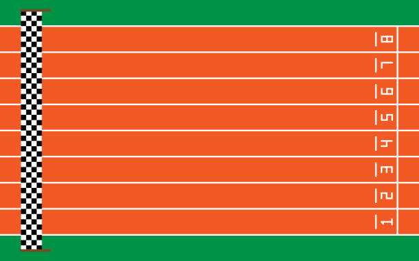 eight running tracks on green with goal,vector illustration eight running tracks on green with goal,vector illustration. finishing stock illustrations