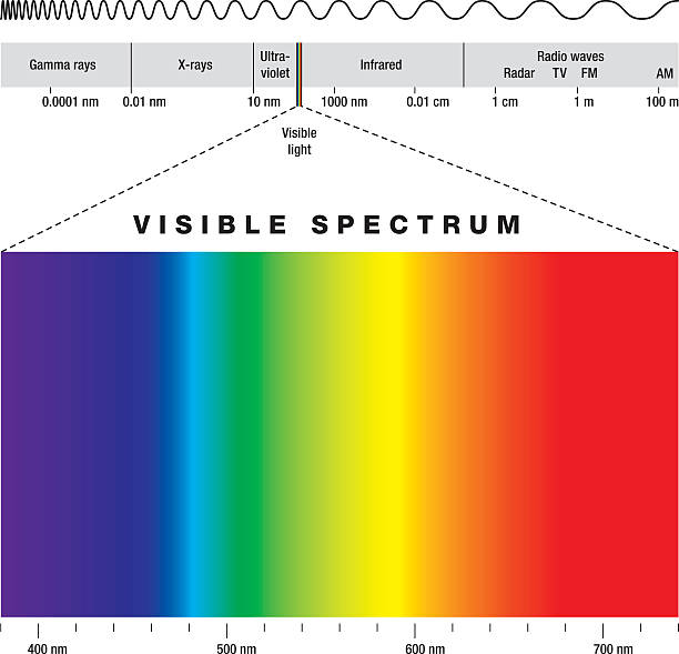 Electromagnetic Spectrum And Visible Light Electromagnetic spectrum of all possible frequencies of electromagnetic radiation with the colors of the visible spectrum. infrared stock illustrations