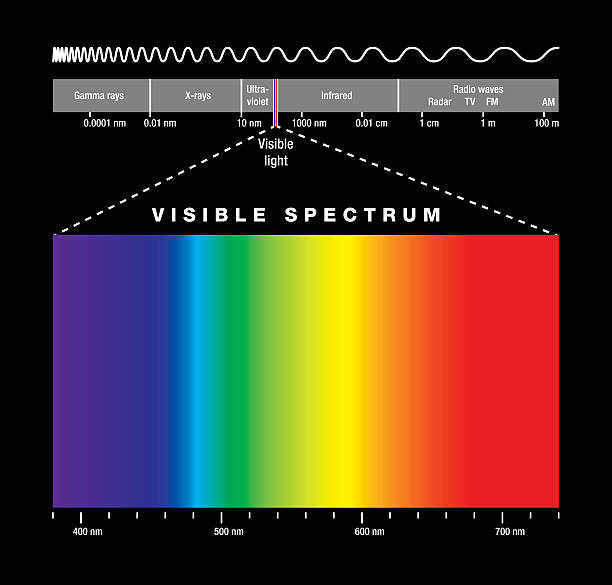 Electromagnetic Spectrum And Visible Light Electromagnetic spectrum of all possible frequencies of electromagnetic radiation with the colors of the visible spectrum. Isolated illustration on black background. infrared stock illustrations