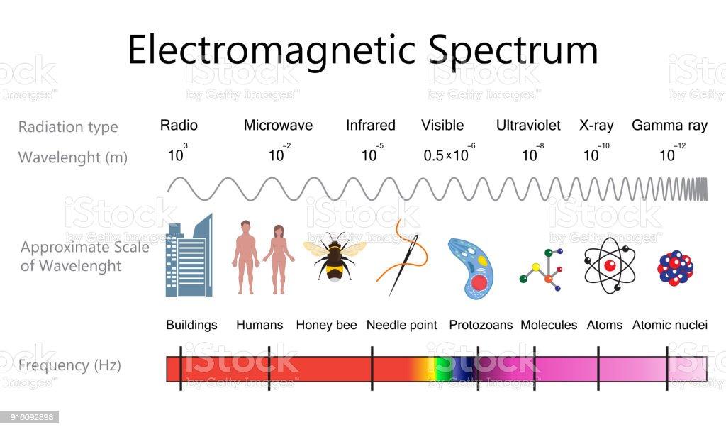 Electromagnetic spectrum diagram stock vector art more images of electromagnetic spectrum diagram royalty free electromagnetic spectrum diagram stock vector art amp more images ccuart Gallery