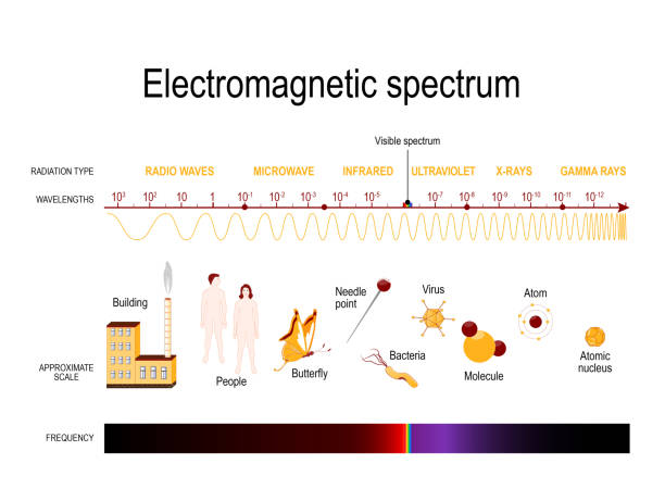 electromagnetic spectrum Diagram of the electromagnetic spectrum. illustration showing various properties across the range of frequencies and wavelengths infrared stock illustrations