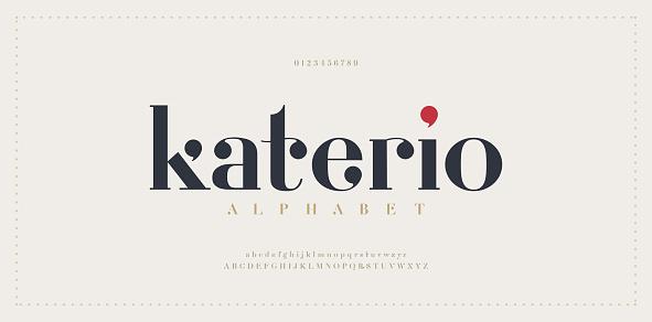 Elegant alphabet letters font. Classic Modern Serif Lettering Minimal Fashion Designs. Typography  decoration fonts for branding, wedding, invitations, logos. vector illustration