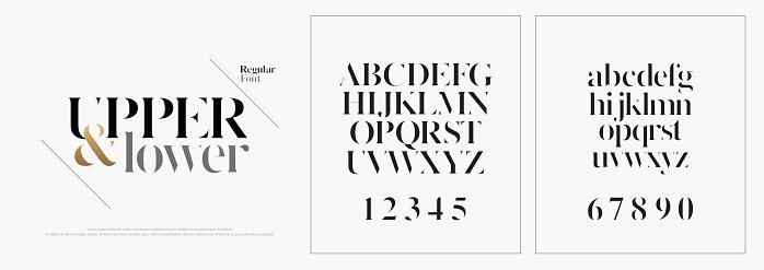 優雅的字母表字字體集經典的自訂刻字設計的標誌 海報版式字體經典樣式常規大寫小寫和數位向量例證向量圖形及更多全景圖片
