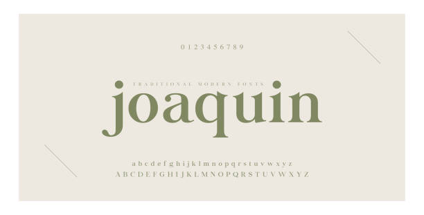 Elegant alphabet letters serif font and number. Classic Lettering Minimal Fashion. Typography Luxury fonts uppercase, lowercase and numbers. vector illustration Elegant alphabet letters serif font and number. Classic Lettering Minimal Fashion. Typography Luxury fonts uppercase, lowercase and numbers. vector illustration typescript stock illustrations