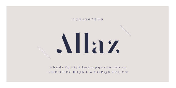 elegant awesome alphabet letters font and number. classic lettering minimal fashion designs. typography fonts regular uppercase and lowercase. vector illustration - alphabet designs stock illustrations