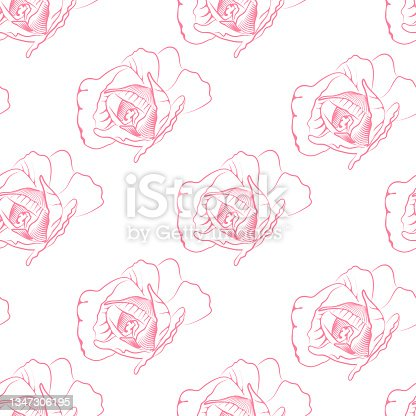 istock Elegant beautiful vector floral hand-drawn two-color pattern with contour drawing of pink rose flower transparent background for textile design, wallpaper, gift wrapping. 1347306195