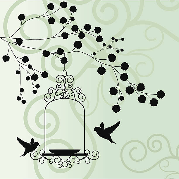 Elegant Bird background with tree vector art illustration