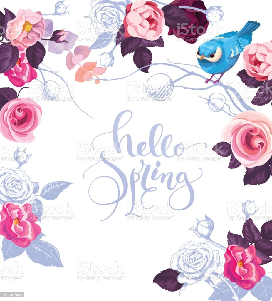 Elegant Botanical Card With Hand Written Lettering Hello Spring. Cute Blue  Bird, And Roses