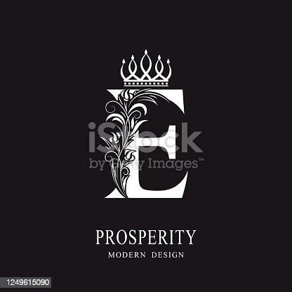 Elegant Capital letter E. Graceful royal style. Calligraphic beautiful logo. Vintage floral drawn emblem for book design, brand name, business card, Restaurant, Boutique, Hotel. Vector illustration