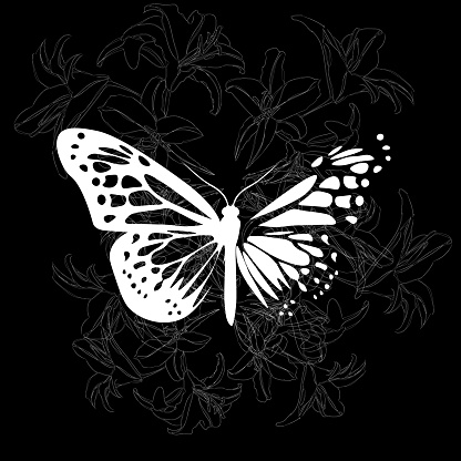 elegant dark illustration of butterfly and lilies