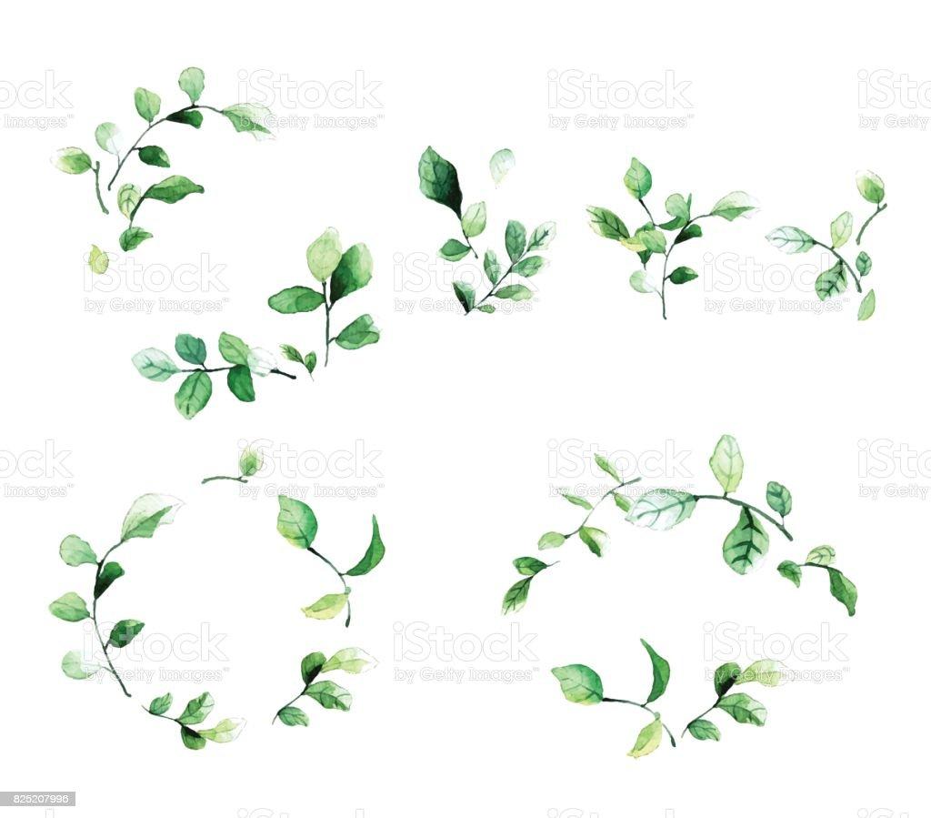 Ilustración de Marcos Florales Decorativos Elegantes Con Hojas ...